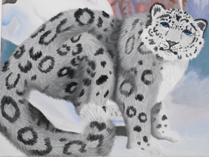 Snowycatpic_zps837cf2e1.jpg