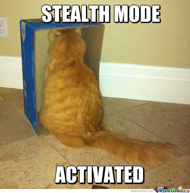 stealth-mode-activated_o_1168408.jpg